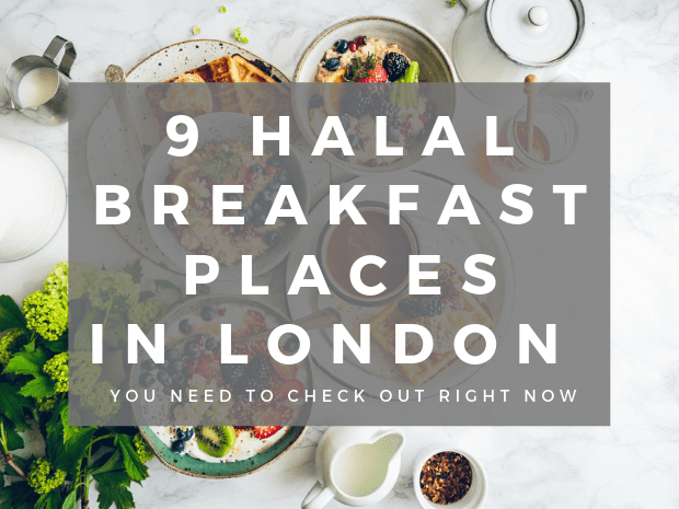 UK Directory - Halal Girl About Town